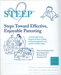 STEEP Manual Cover